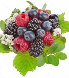 отдушка лесные ягоды